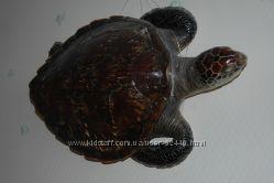 Океаническая большая черепаха. Эксклюзив