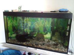 Продам аквариум 350 литров